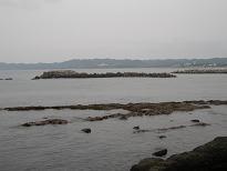千葉南房の海