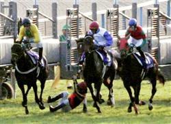 ポルトフィーノ 武豊 落馬 エリザベス女王杯